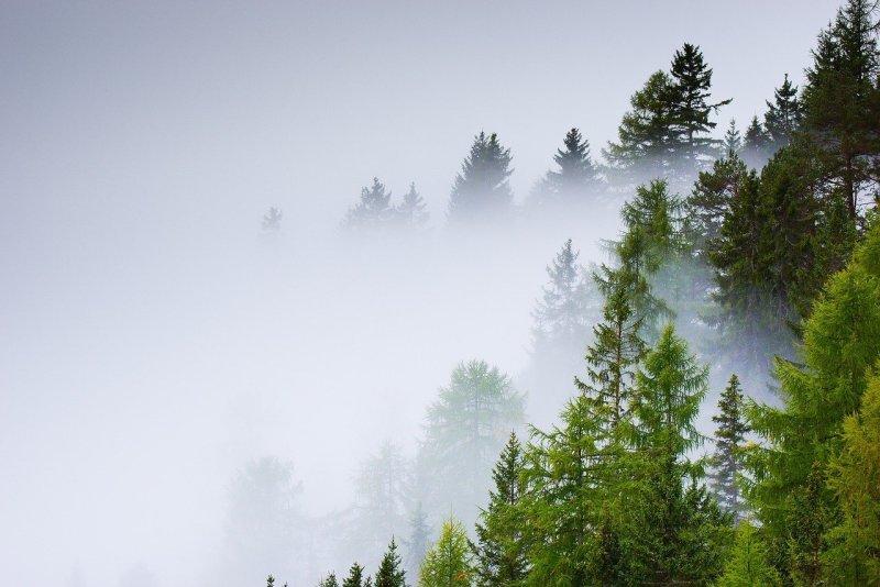 making a difference fog landscape image by surprisinglives.net