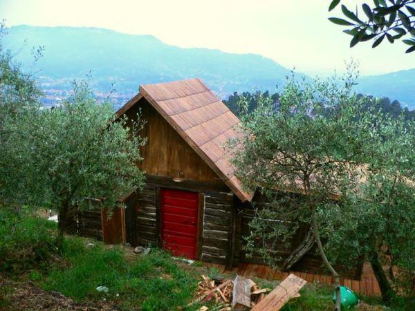 despre-case-din-lemn-vechi-mester-Danut-Hotea-case-rustice-din-lemn-30