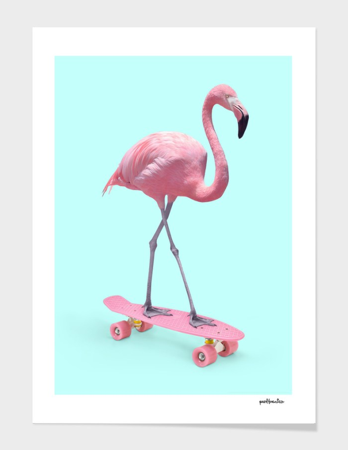 Skate Flamingo by Paul Fuentes