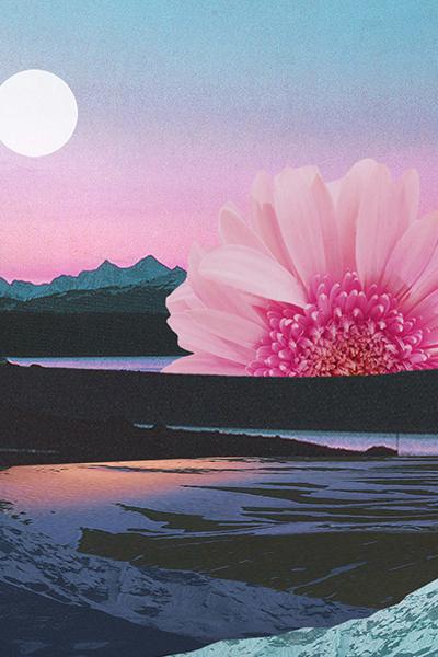 Karen Lynch - Shasta Sunset