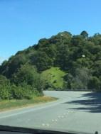 Edgewood Road