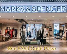 Marks and Spencer Survey