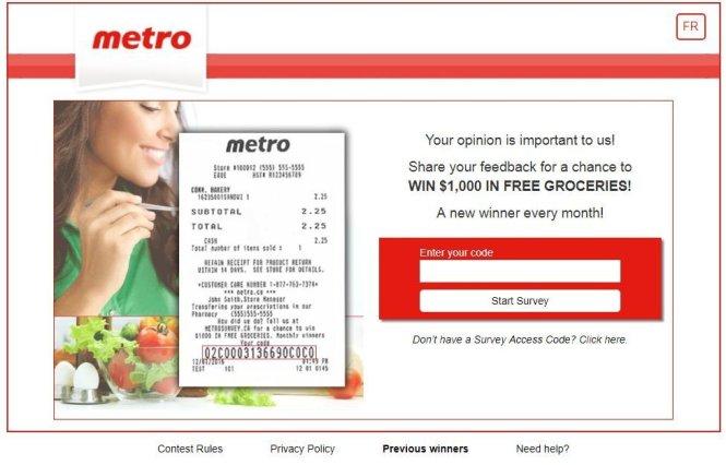 Metro Surveys