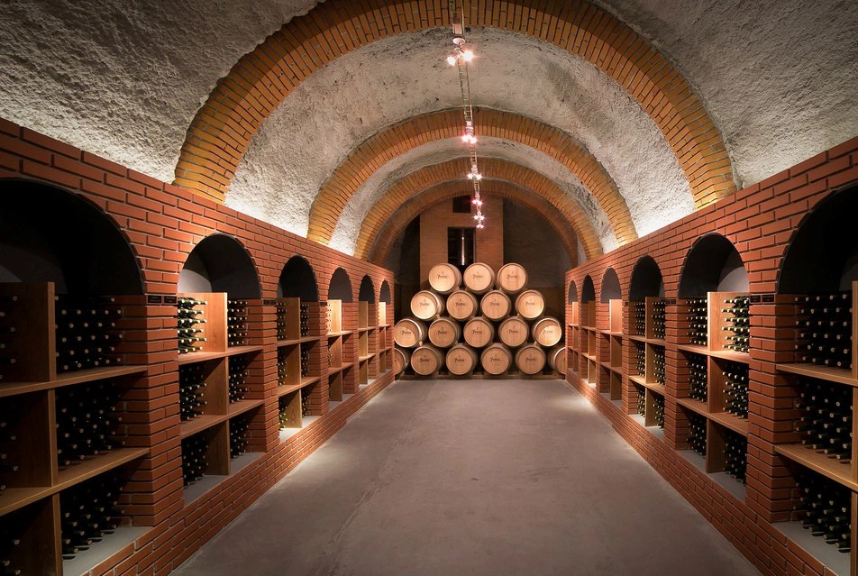 How to Build An Underground Cellar All You Need to Know