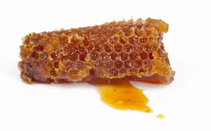 Apitherapie Bienen bienenwachs Bienenzucht Gelee Royale Honig Propolis