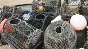 Fallen für Fische