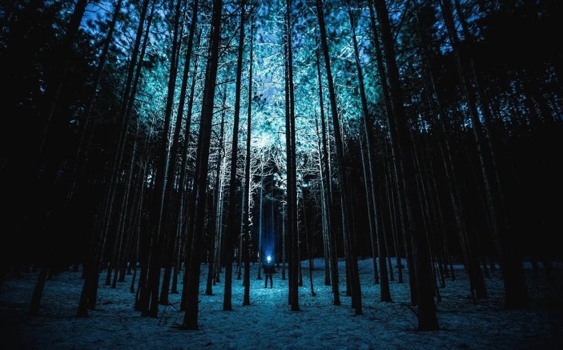 Übernachten im Winter im Wald
