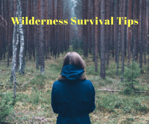 how to learn wilderness survival skills