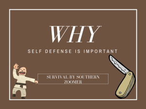 why self defense is important