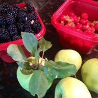 Gathering Free Food During Summer - Berries and Apples
