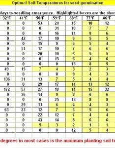 Vegetable and herb seed germination chart also town  country gardening rh survivalfarm wordpress