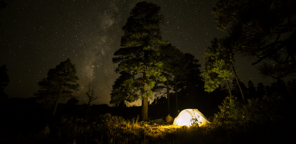 tent-light
