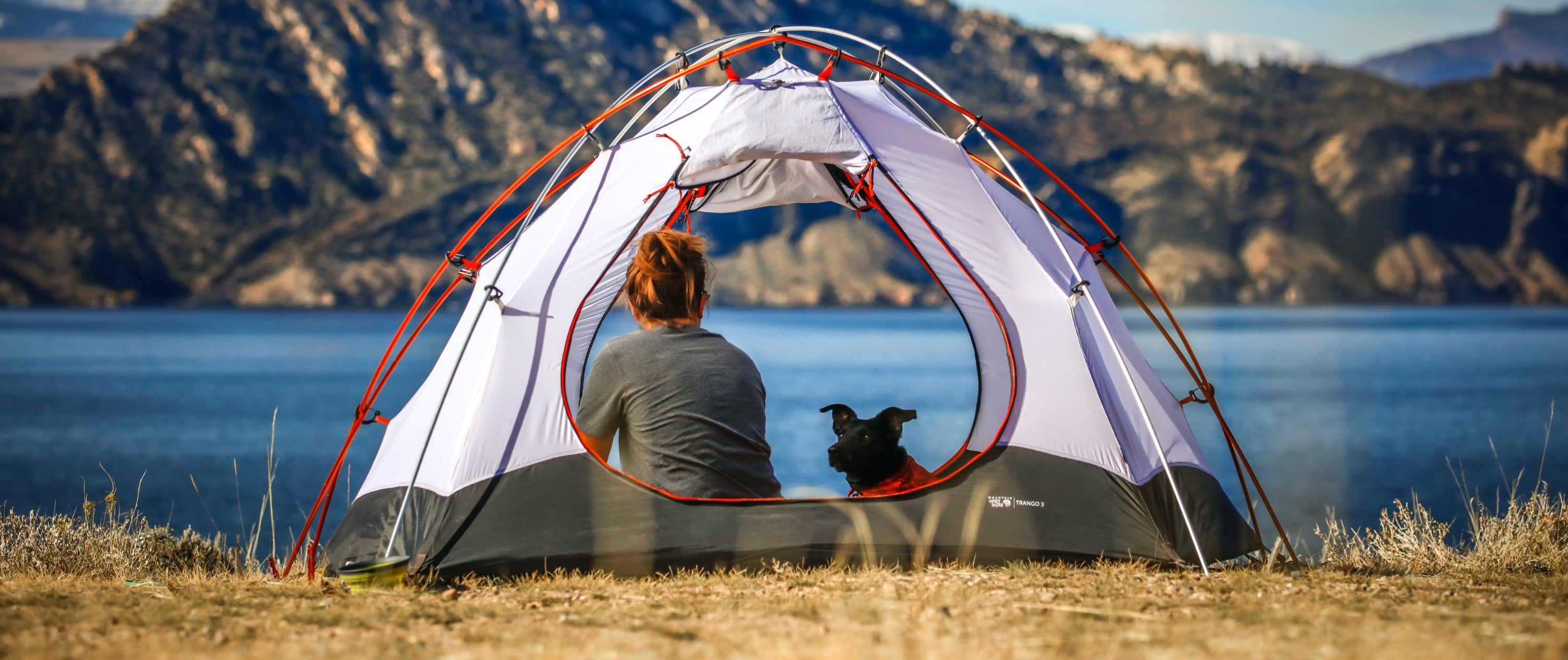 camping-with-dog