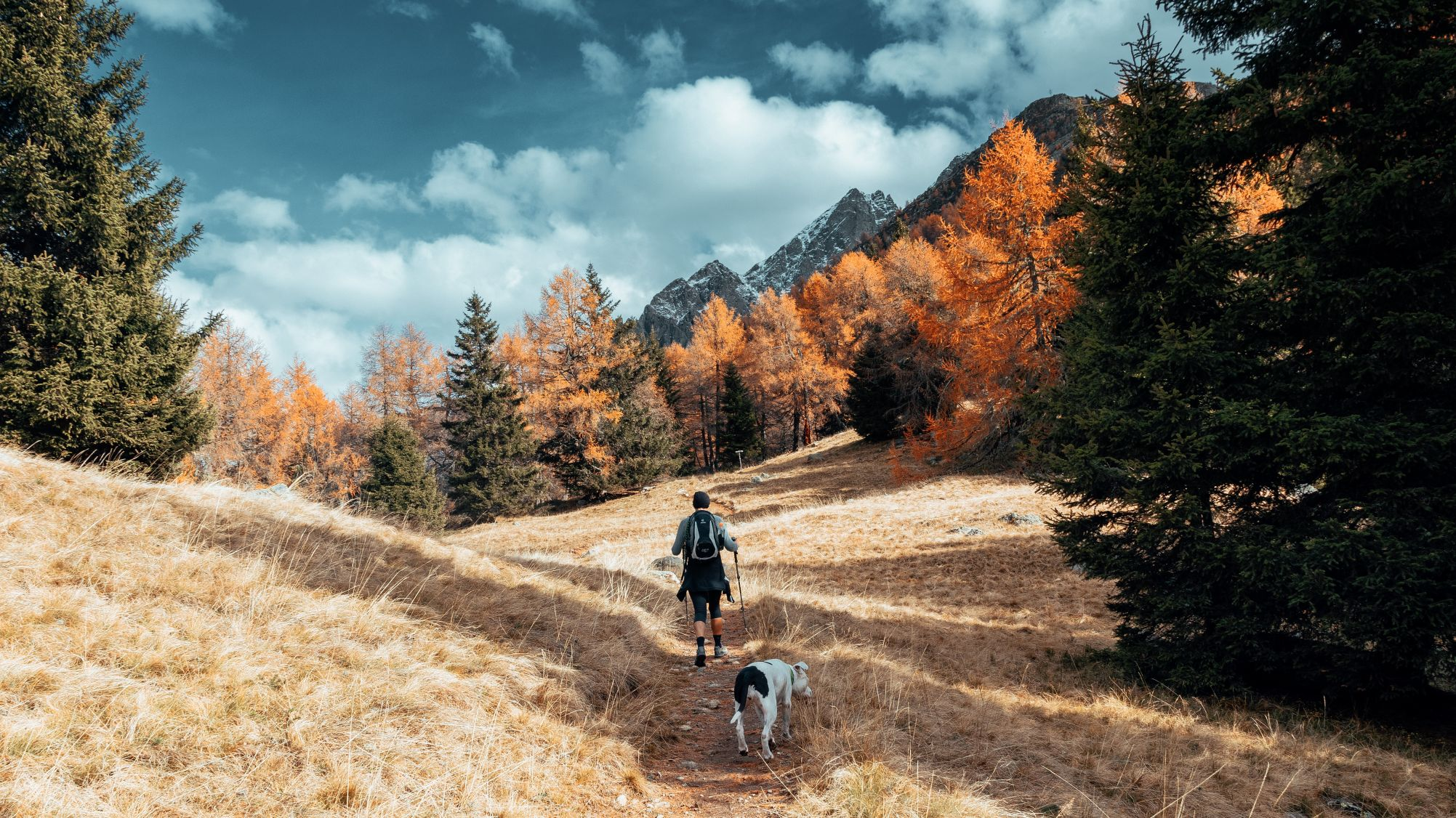 hiking-with-dog-cover