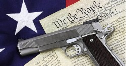 What Gun Control Looks Like