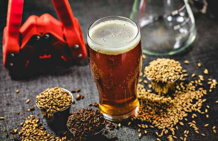 Homebrew honey brown beer | Home Brewing: Fun Hobby Or Vital Skill?