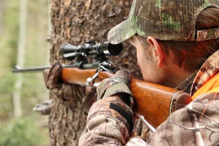 A hunter aiming rifle in forest   Your Road Map To Self Sufficiency