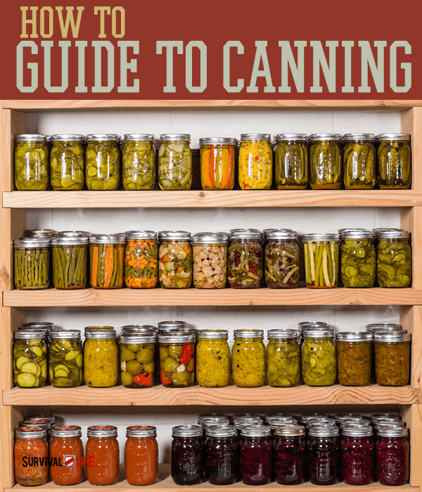 Canning Jar | How To Guide To Canning | https://survivallife.com/canning-jar-guide/