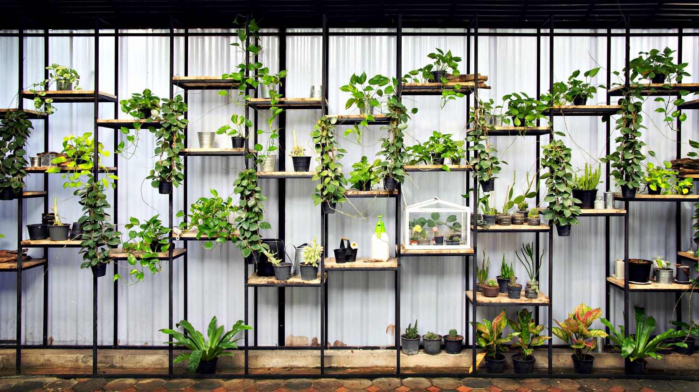 Building Herb Garden Box