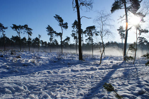 winter camping, survivallife, how to camp in the snow, best time for camping, safe camping