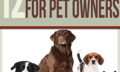 pets, prepping. prepping tips, survival tips