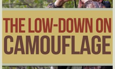 camouflage, concealment, evasion, survival tips