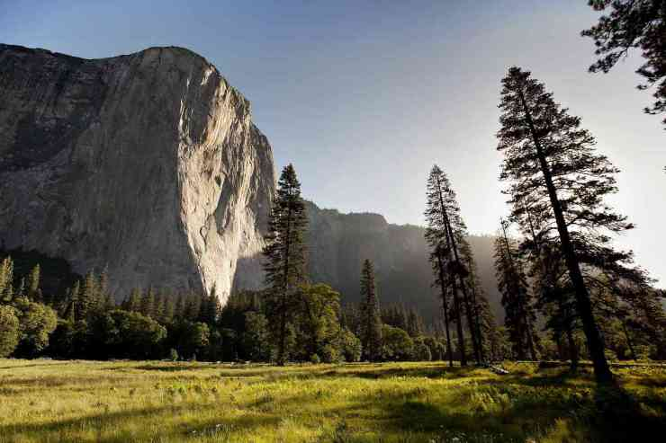 Yosemite mountains | Yosemite National Park Camping | Survival Life National Park Series
