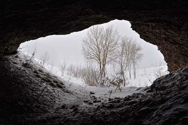 winter survival shelter