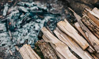 Feature | Firewood | How To Choose The Best Firewood For A Perfect Campfire