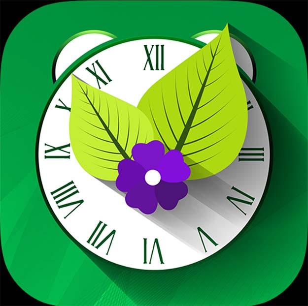 vegetable garden - yum garden app