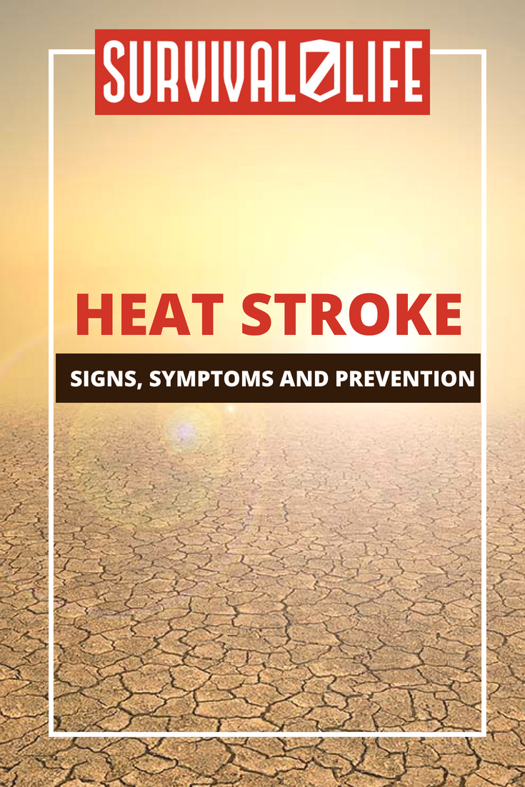 Check out Heat Stroke: Signs, Symptoms, and Prevention at https://survivallife.com/heat-stroke-signs-symptoms-prevention/
