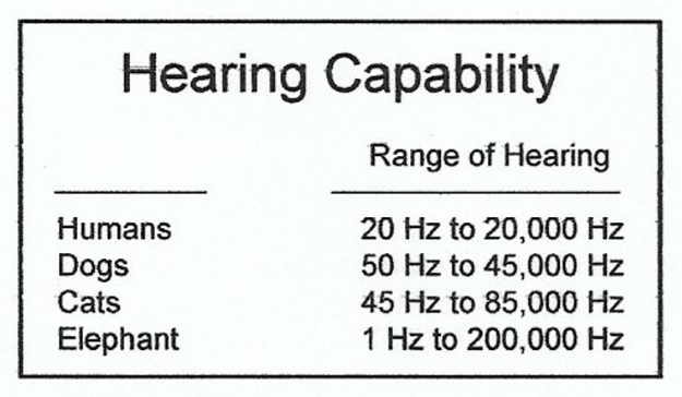 Hearing capability | Sound As A Defense Weapon: How Sound Frequency Can Cause Pain