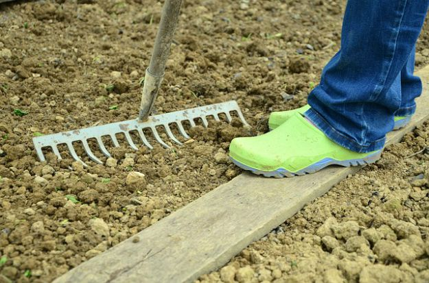 Getting the Garden Beds Ready | Fall Garden Planting Tips For The Late Summer