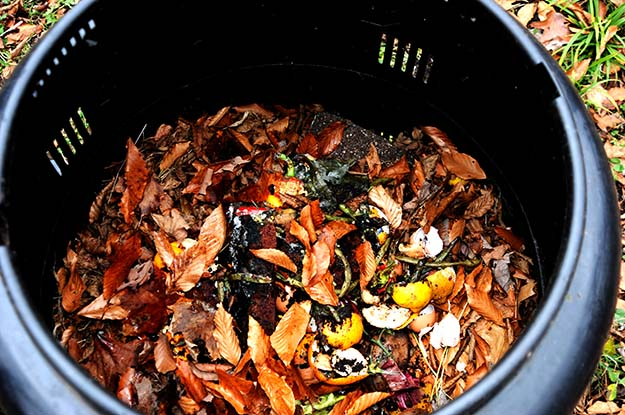 Close-up view of a composter full of leaves, soil, fruit and other mulch.