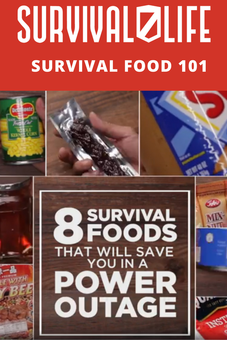 Check out 8 Survival Foods That Will Save You in A Power Outage at https://survivallife.com/survival-food-will-save-power-outage/