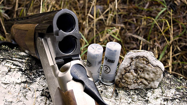 Arms and Ammo | California Hunting Laws and Regulations