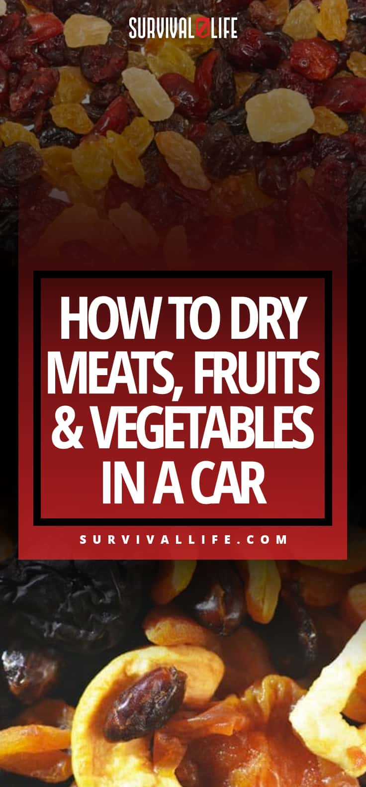 How To Dry Meats, Fruits & Vegetables In A Car