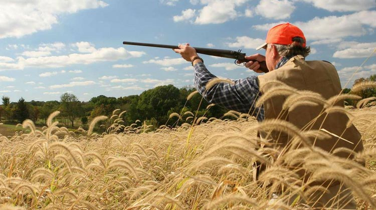 Illinois Hunting Laws