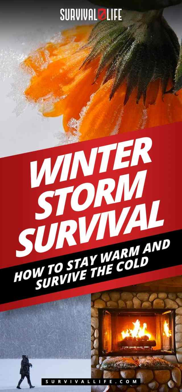 Placard | Winter Storm Survival: How to Stay Warm and Survive the Cold