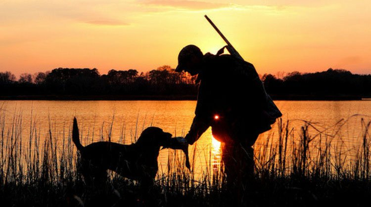 Louisiana Hunting Laws Featured Image