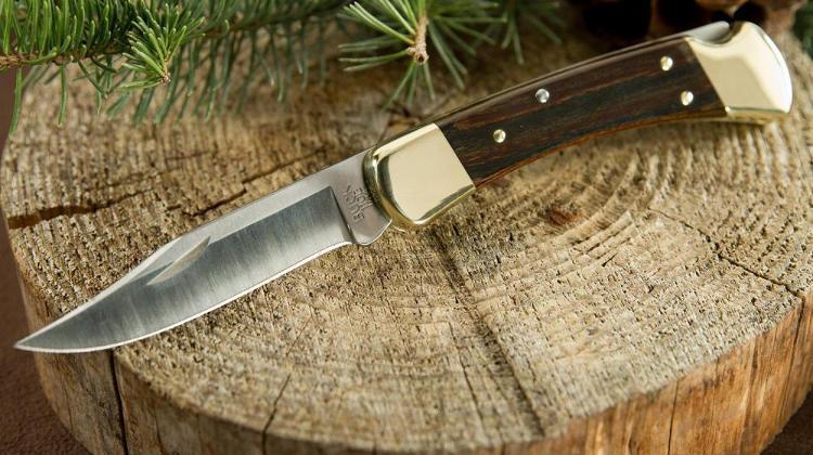 Buck Knives 110BRS Folding Hunter