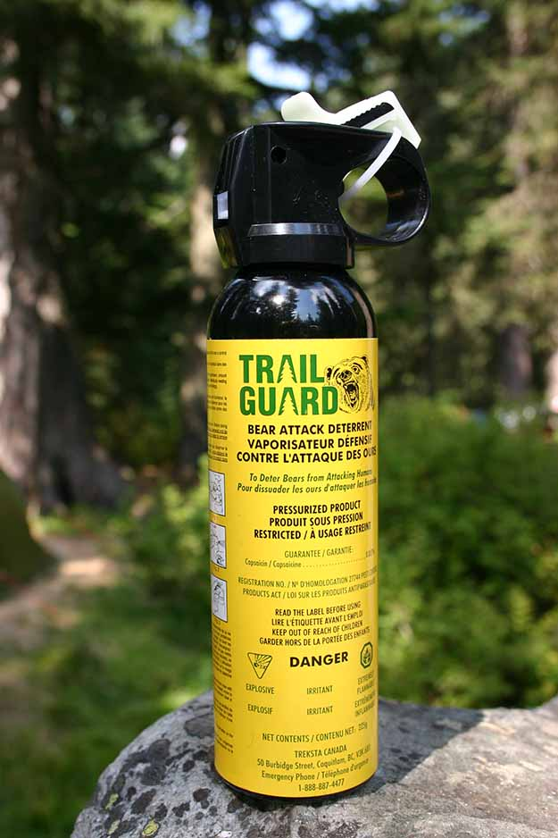 Keep a Bear Spray with You at all Times | How To Survive A Bear Attack