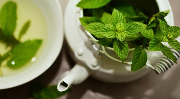 Mint Leaves | A Great Drink for Comfort and Health