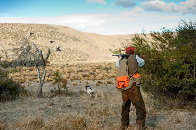 Familiarize the hunting area   Practical Quail Hunting Tips Every Hunter Should Follow