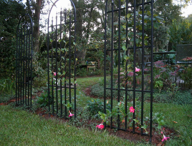 trellis Preparing Your Spring Garden Now   It's Never Too Early!