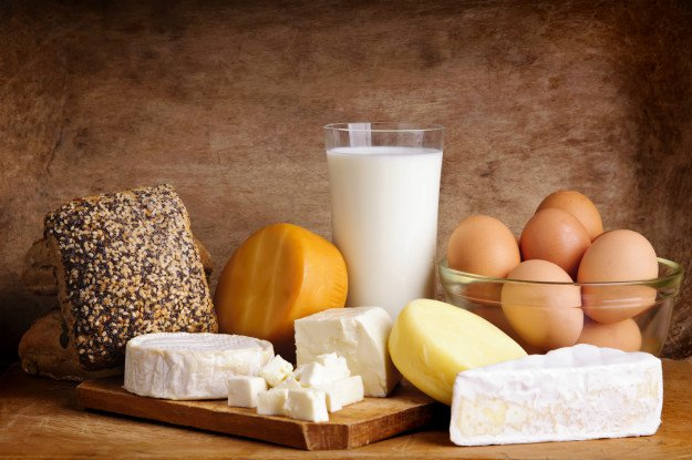 dairy products | Lactose Survival
