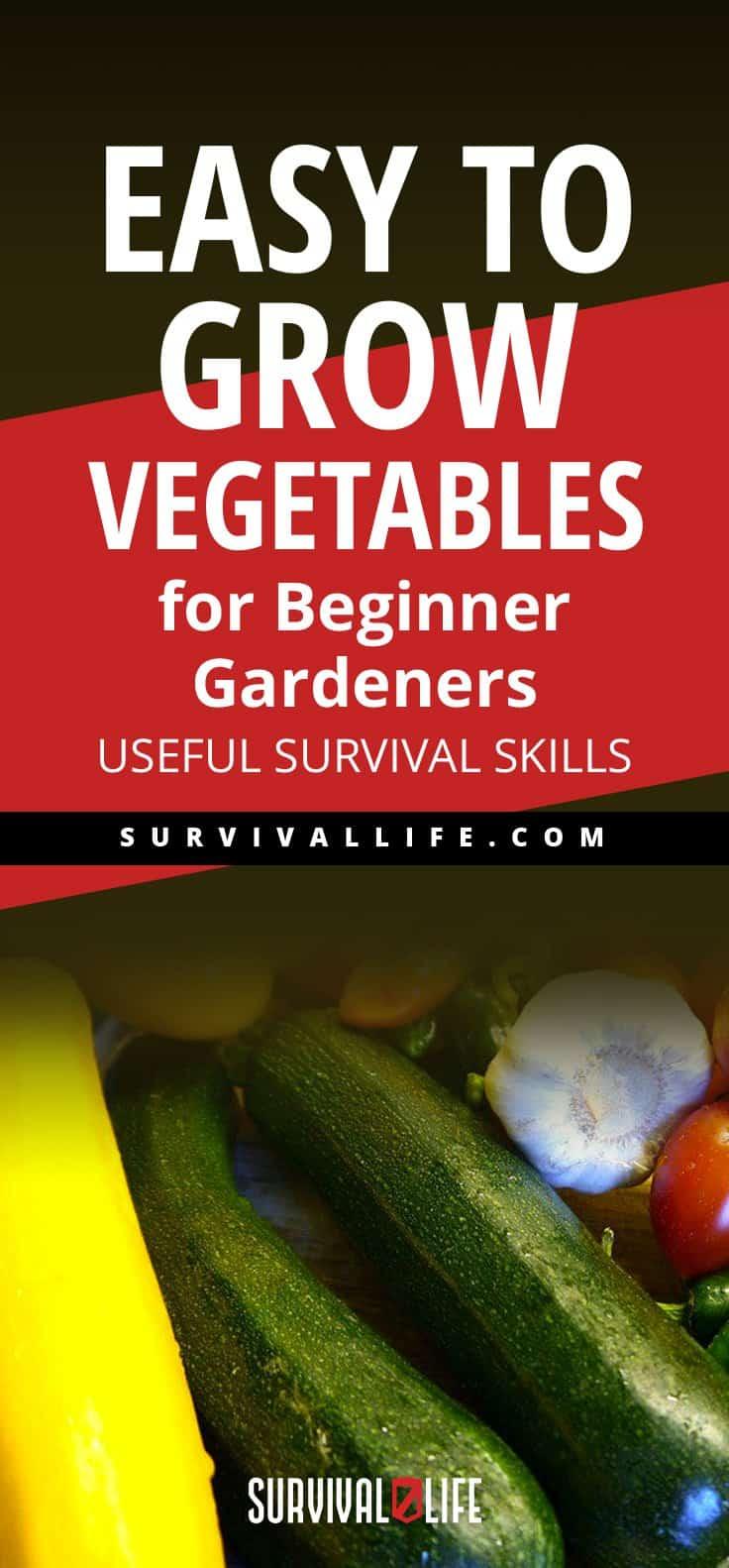 Easy To Grow Vegetables For Beginner Gardeners | Useful Survival Skills