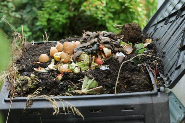 composting | Composting For Beginners