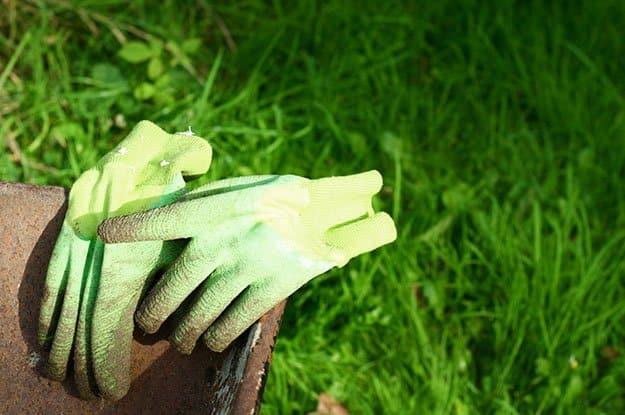Gardening Glove | 50 Easter Egg Hiding Spots