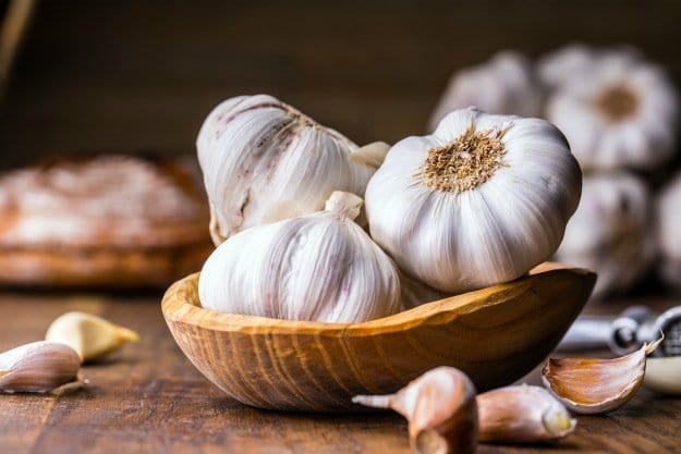garlic | Triple A's of Nature's Medicine: Antiviral ~ Antibacterial~ Antibiotic